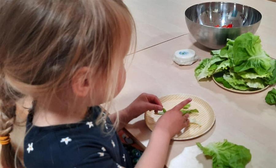 Wat is biologische en biologisch dynamische voeding?